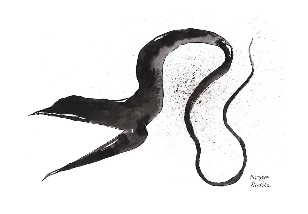 Pelican Eel (Eurypharynx Pelecanoides)