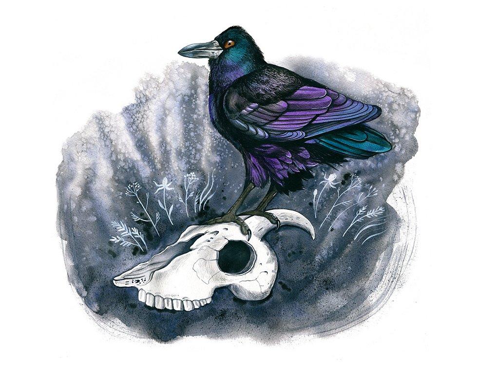 Bird Сalendar 2020
